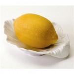 LemonSoaponDish